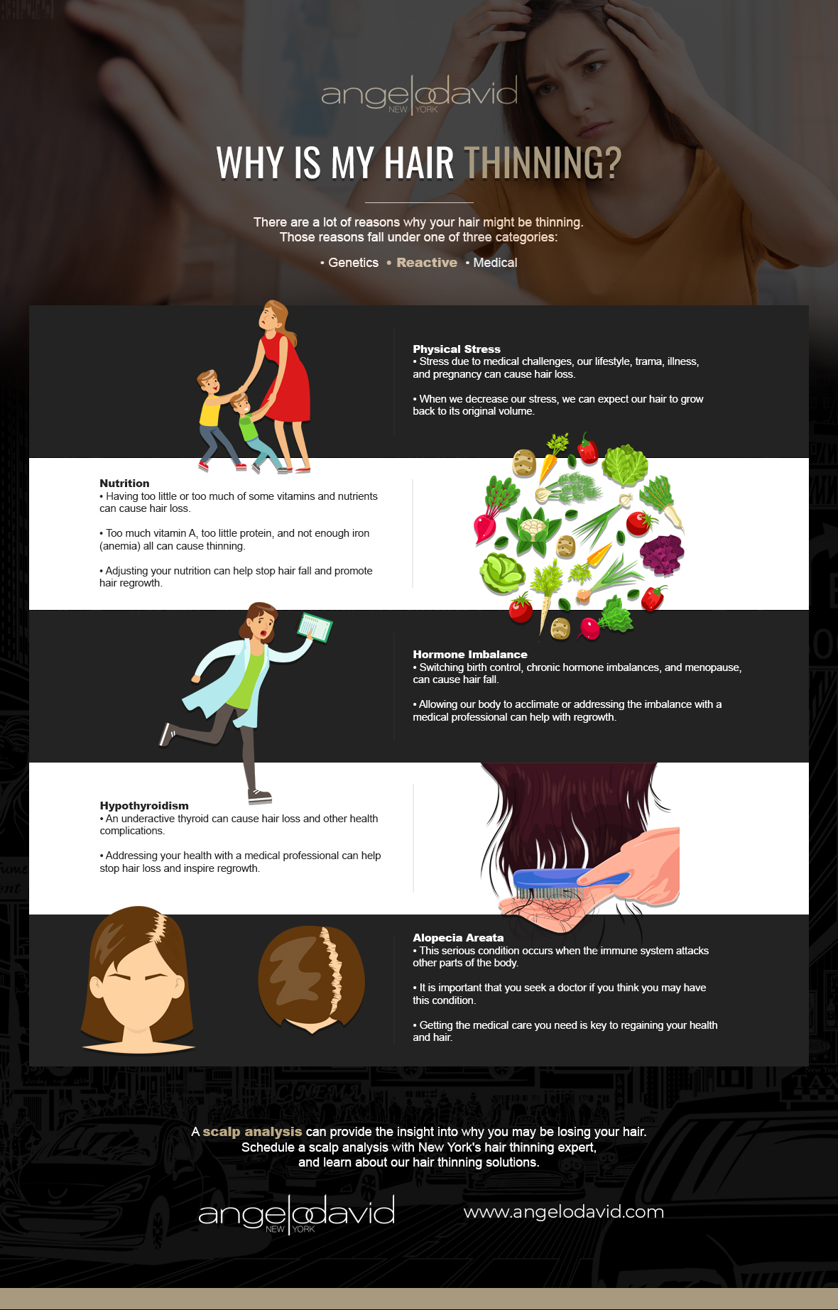 Why is My Hair Thinning Infographic